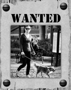 Irresponsible Dog Owners Wanted Poster