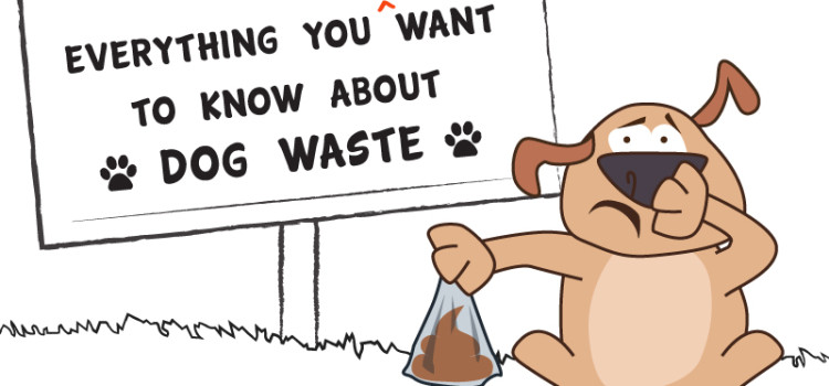 """Everything you don't want to know about dog waste"" – Free seminar"