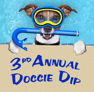 3rd annual doggie dip asheville