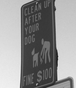 dog-waste-sign-nyc-1970s