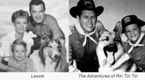 lassie-adventures-of-rin-tin-tin