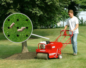 core-aerator-healthy-lawn-plugs