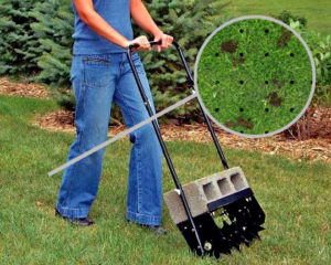 spike-aerator-healthy-lawn-holes