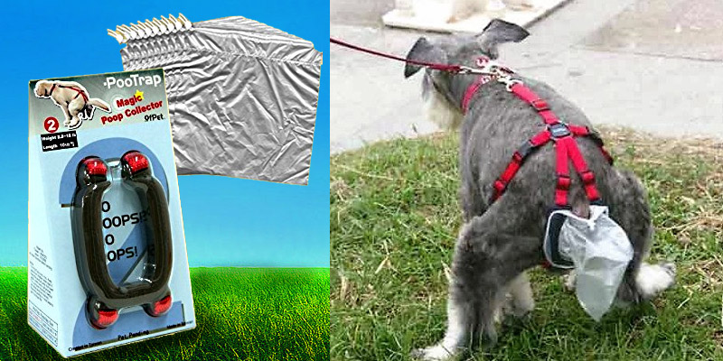 Top 10 Alternatives To The Dog Waste Bag