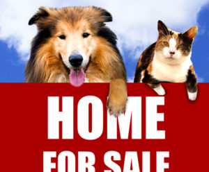 Selling your house with pets