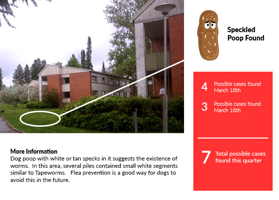 possible outbreak from dog waste