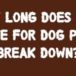 How long does it take dog waste to decompose?