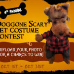 DOGGONE SCARY Online Pet Costume Contest | 2018