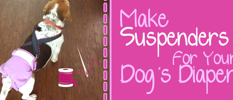 Make Suspenders for Your Dog's Diaper in Less Than 5 Minutes