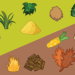 Common Misconceptions on Browns and Greens in Composting